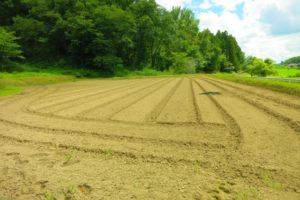 工場建設の土地探しの3つの方法と考慮すべき3つのポイントとは?