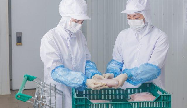 食品工場を建設するときに注意すべき12のポイント